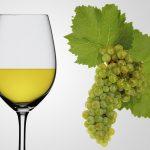 chardonnay-wine-reviews