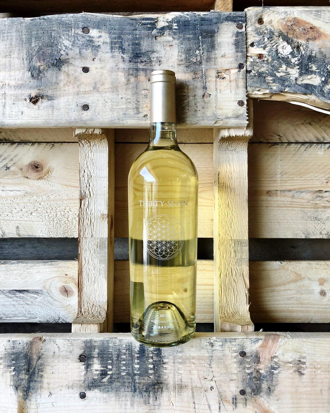 Gold Medal Wine Club Review - Wine Club Reviews